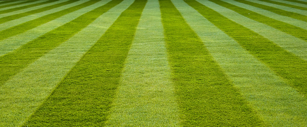 A Beautiful Lawn Doesn't Happen By Itself!